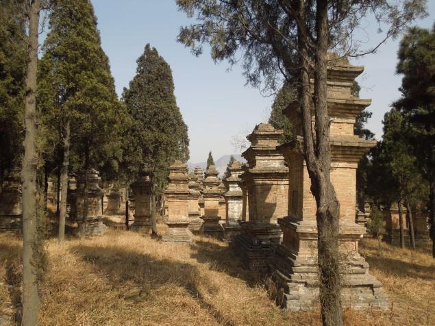 Forêt de Pagodes du monastère Shaolin