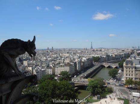Vue de Paris et la Seine