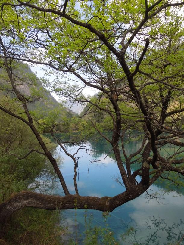 Jiuzhaigou, Sparkling Lake