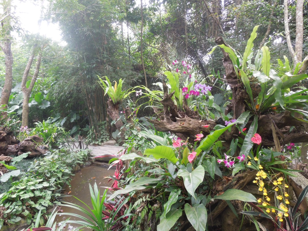 Yanoda Rainforest, Sanya, Chine