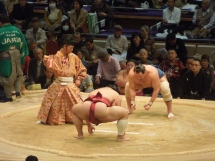 Tournoi de sumo, Japon