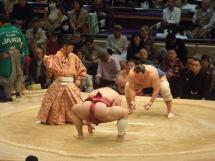 Tournoi de sumo, Japon
