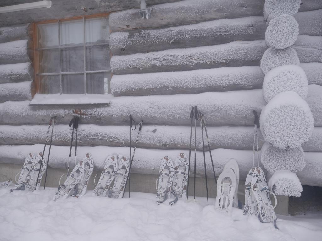 Laponie - Randonnée en raquettes