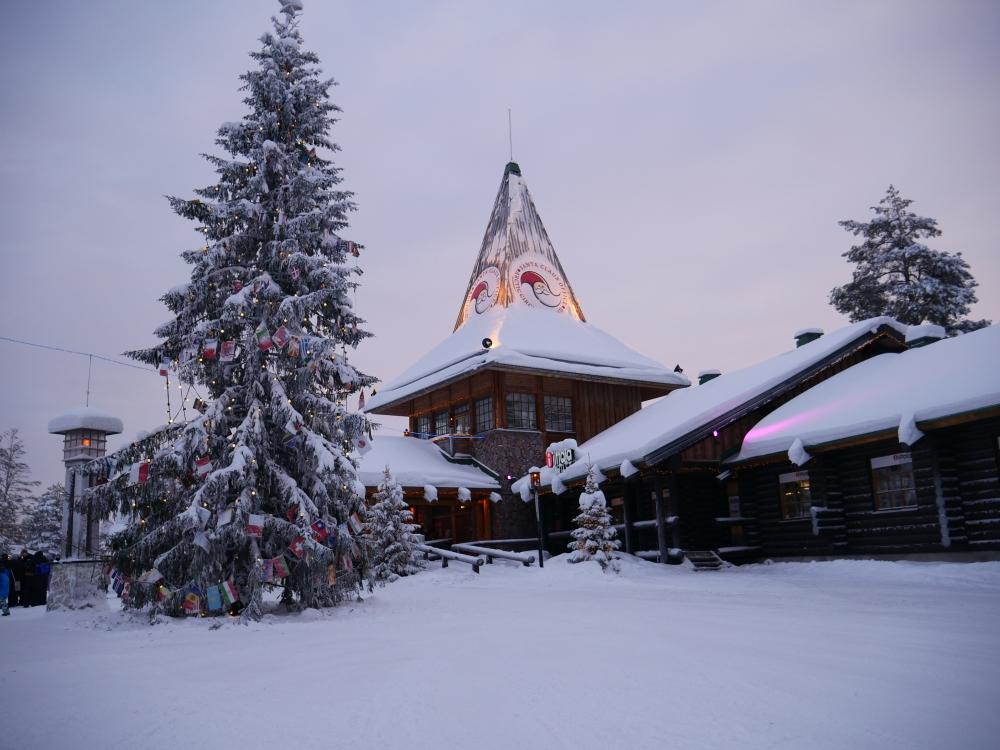 Laponie - Village du Père Noël - Sapin